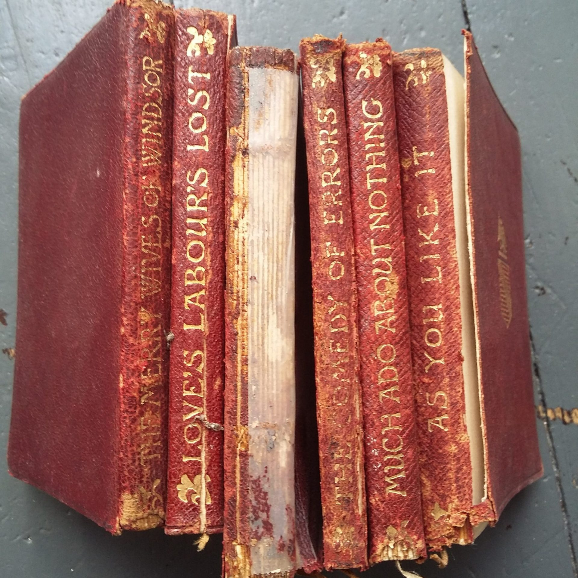 Books in various stages of disrepair