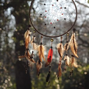 Make a Dreamcatcher and join Lisa from Dreamweaving Dreamcatchers who will show you the basic steps of the relaxing mindful craft of creating your own dream catcher